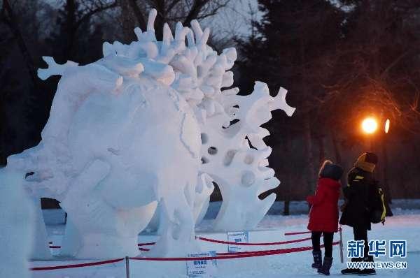 2月5日,游客在哈尔滨太阳岛雪博会雪雕区参观游览.
