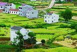 走有中国特色现代生态农业发展之路