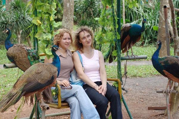 海南野生动植物园