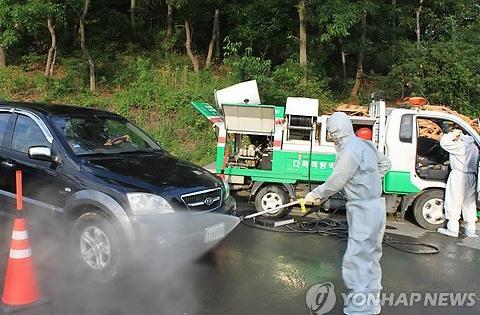 韩国爆发口蹄疫疫情 丧失