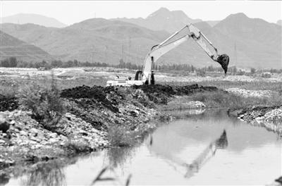 北京 张斌/挖掘机在疏通河道。京华时报记者张斌摄