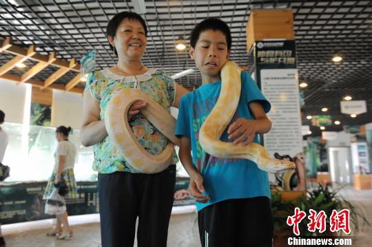 """为期1个多月的名贵蛇展,共展出包括""""蛇中大熊猫""""的莽山烙铁头,全世界"""