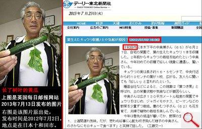 能源科普营:日本变异蔬菜并非辐射而来_财经_凤凰网