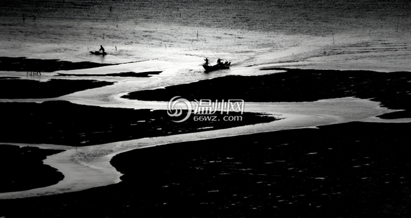 洞头海洋摄影大赛获奖作品欣赏图片