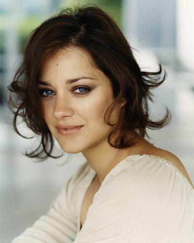 最美脸蛋玛丽昂·歌迪亚 气质发型回顾