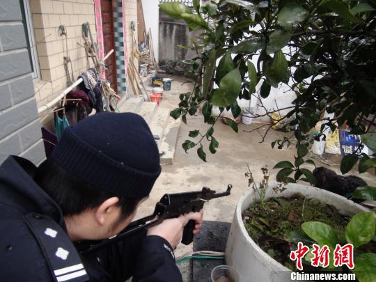 图为特警使用微型冲锋枪瞄准藏獒准备射击。 桐庐公安 摄