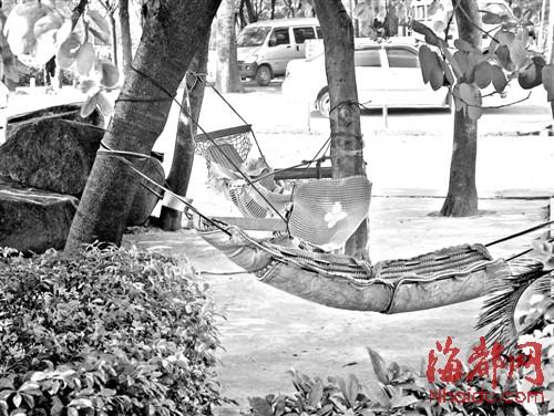 这种情况在城区真是非常少见,偶尔看到有人挂吊床,也都是网状的吊床临