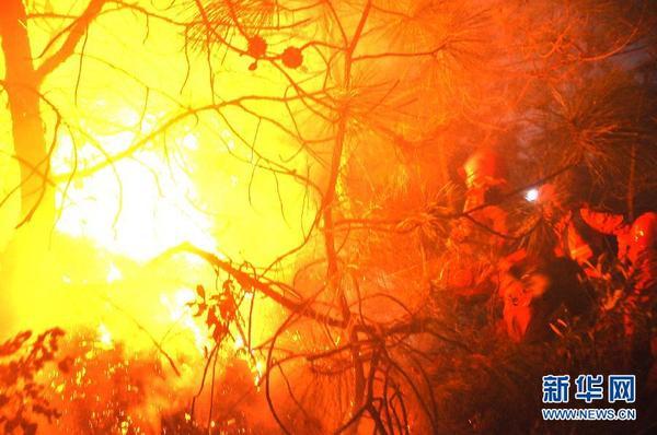 四川冕宁腊窝乡森林火灾仍在扑救