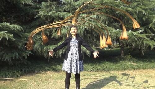 44岁成都家庭主妇自学半年时间 打破日本平衡舞