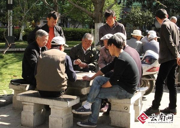 金马坊附近的小公园里,人们边晒太阳边打牌。