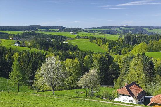 德国城镇化:城市如农村 农村胜城市
