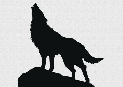 狼霸气手绘