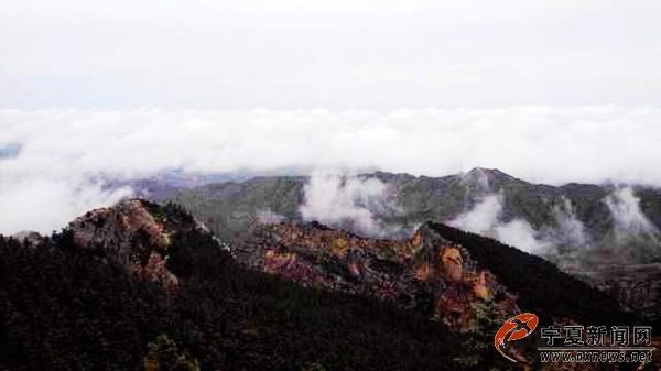 雨后的银川苏峪口国家森林公园云海翻腾