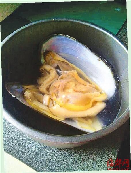 河蚌实物内部结构图