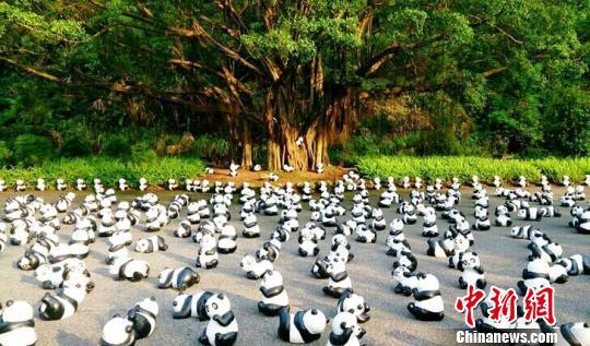 千只仿真熊猫亮相哈尔滨太阳岛庆国庆(图)