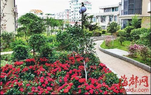 屋顶绿化打造城市 空中花园
