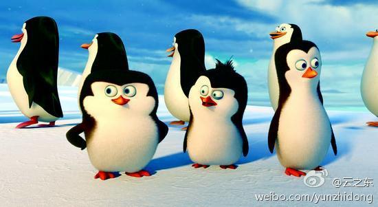 《马达加斯加的企鹅》够贱够萌够欢乐