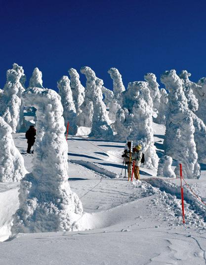 日本秋田雪景