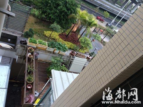 福州 楼上住户私扩阳台 楼下 空中花园 变黑屋