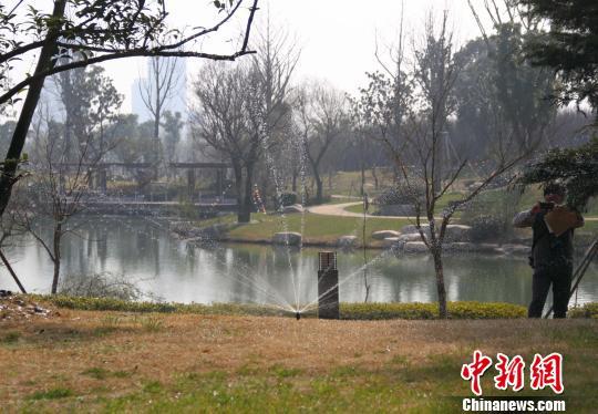 工作人员用景观湖里的水浇灌绿化。 李珂 摄