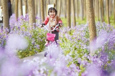 家森林公园内骑行图片