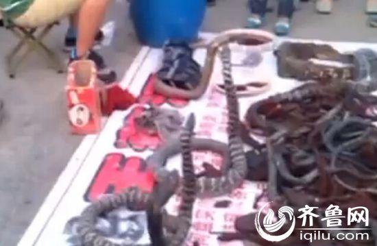 几个白色的编织袋上摆满了蛇、乌龟和蜥蜴。(视频截图)