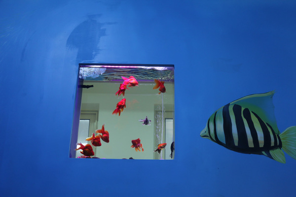 """幼儿园墙壁上的""""海洋世界"""
