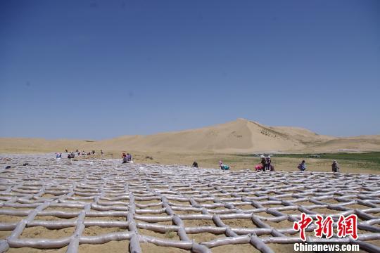 青海省荒漠化与沙漠化土地面积再呈双降|荒漠