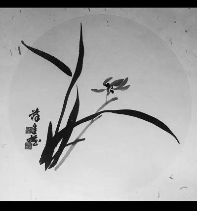 杨桃树下|孩子|开水_凤凰资讯