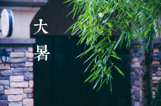 【醉花阴】七月热浪迎大暑 - 幽兰 - 碎玉轩
