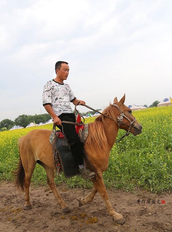 马 骑马 600图片