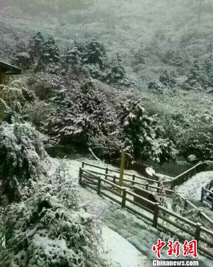 轿子雪山雪景。 网络图摄