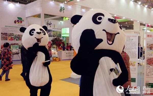 大米贴画图片大全图片熊猫