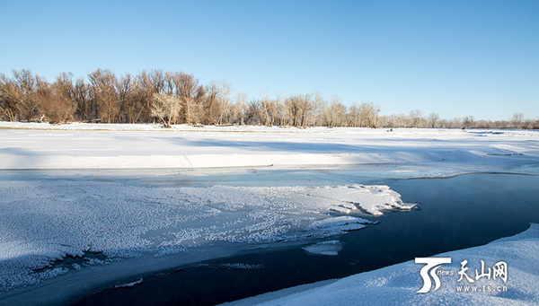 天山网讯(通讯员王范平摄影报道)额尔齐斯河是中国唯一流入北冰洋的河流,源出中国阿尔泰山西南坡,山间两支源头,全长4248公里,在中国境内546公里,流域面积5.7万平方公里,年径流量多达111亿立方米。水中多产鱼,接近边境处河面宽达公里,可通轮船。流域内众多的支流均从干流右岸汇入,形成典型的梳状水系。额尔齐斯河沿岸风光壮美。又应金山而有银水之美称。