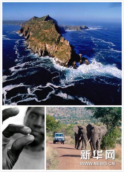 好望角,南非钻石,野生动物保护区(拼图)