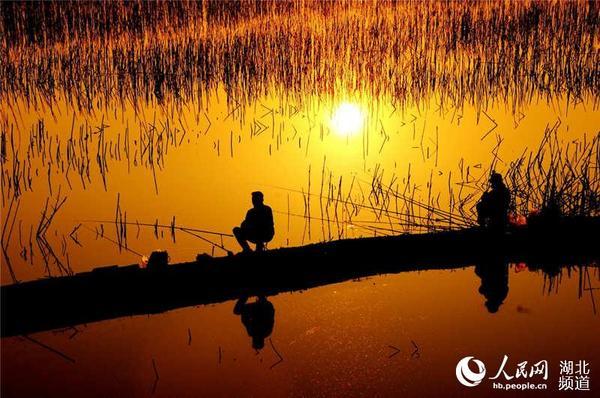 当火红的太阳照亮大地时,迎接日出的是喜庆的阵阵鞭炮声,是光芒万丈的