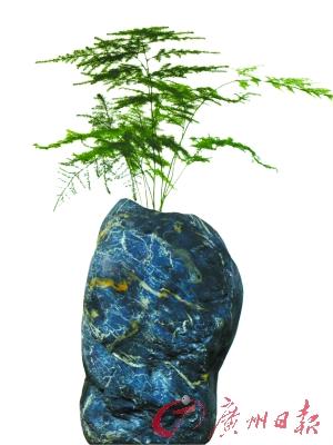 带有独特纹理的石头花盆。