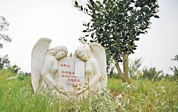 不少人为死去的宠物设立<a href='http://www.gongmutang.com/cemetery/mubei/detail.html' >墓碑</a>。(图片来源于网络)