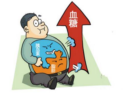中国科学家揭示了肥胖导致糖尿病原因