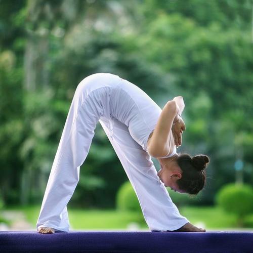 瑜伽。图片来自网络