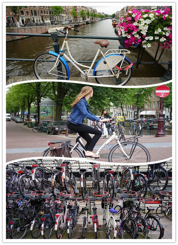 伴被这座比80年代北京更霸气侧漏的自行车王国吓尿了图片