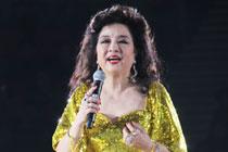2012 金光灿烂徐小凤北京演唱会