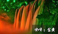 龙须带雨浴日红 金光玉色相荡春