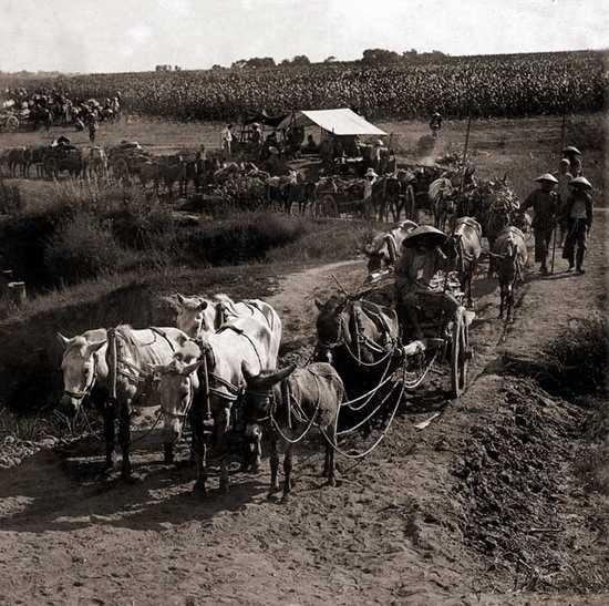 阿塞拜疆总人口数量_1840年 美国总人口