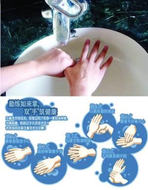 防禽流感不光要正确洗手