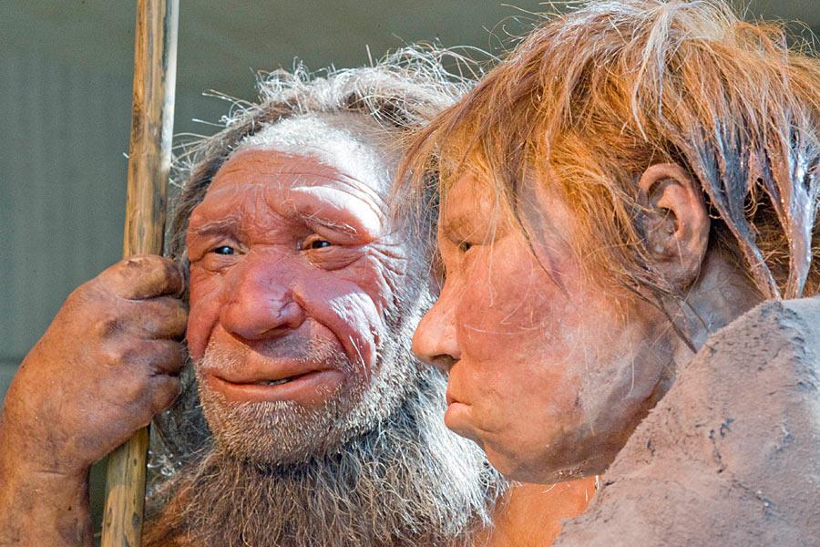热爱橹之人与动物最新版_其中包括我们的近亲尼安德特人,以及最新发现的丹尼索瓦人.