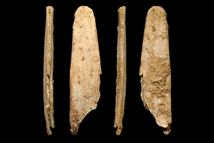 法国西南部多尔多涅河地区的尼安德特人遗址也发现了已有5.1万年历史的4个精致骨制工具。这表明,尼安德特人能够独立制作复杂的工具。考古学家还在20万年前的尼安德特人遗址中发现了红色赭石颜料的残余,这说明他们已经开始使用颜料。