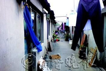 山东潍坊3层楼顶上盖5排简易房  40个房间住满人