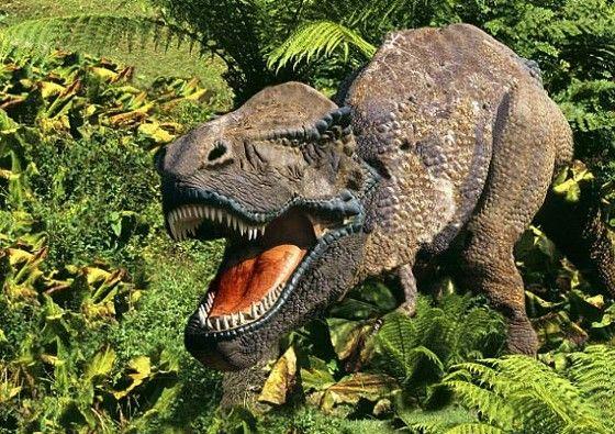 科学家发现七千万年前奇异爬行动物 蜥蜴头 蛇身体
