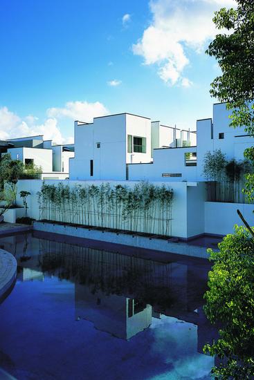 原始质朴的中式别墅庭院设计图片